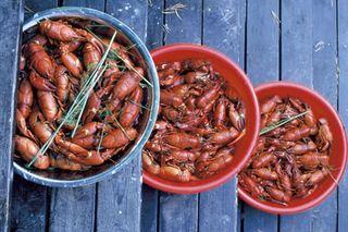 Crayfish05