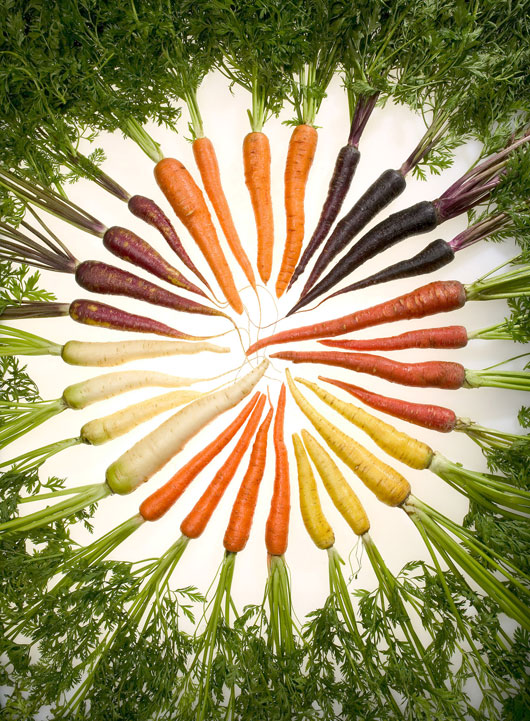 Carrots_of_many_colors_530