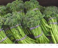 Broccoliniii